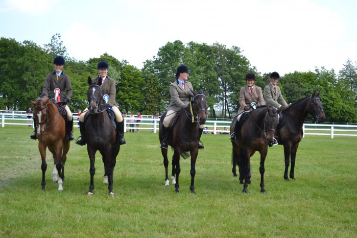 Retired Racehorse Class at Tattersalls