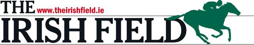 IrishField