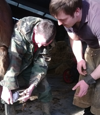 Equine Hoof Care Course at Dunsink