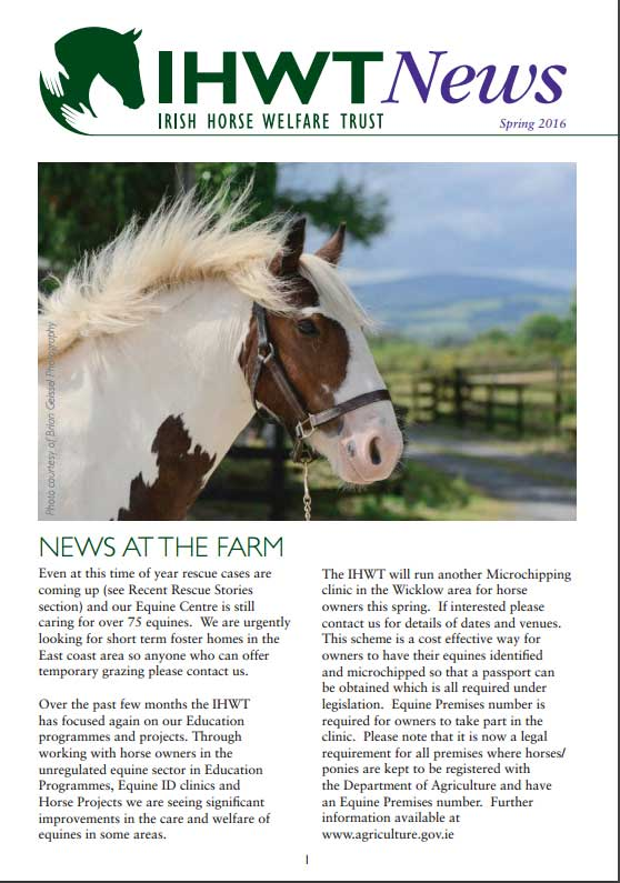 Spring Newsletter Out Now