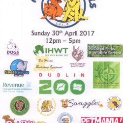 All About Animals Sunday 30th April